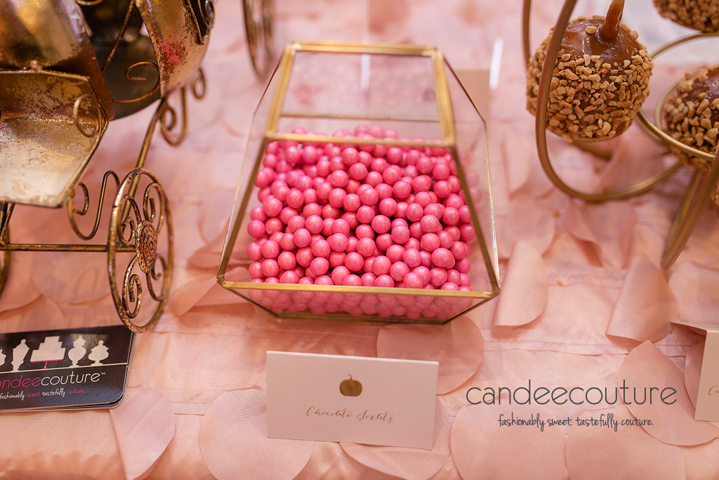 Pink Treats, Pink Candy, Pink and Gold Candy, Mila's Pumpkin Patch Sweet Table by Candee Couture, Pumpkin Patch Sweet Table, Sweet Treats, Candy Table, Dallas Texas, Plano Texas, Mila's Pumpkin Patch Sweet Table, Candee Coture, Pumpkin Treats, Pink Pumpkins
